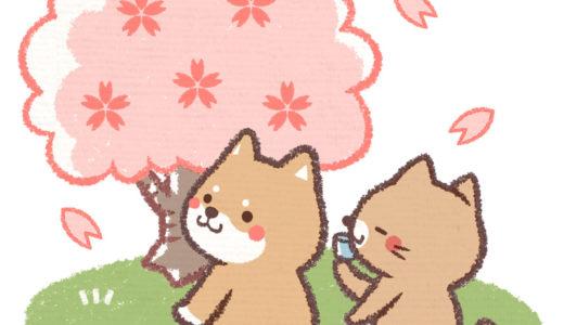 【お花見のマナー】公園で皆が楽しく桜を愛でるには!