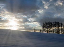 俳句冬の季語 小学生が使いやすい言葉。